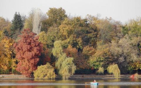 autumn-4620230_1920
